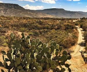 Site5828-ambiance-mexique17