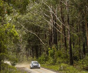 Site5529-ogier-australie17