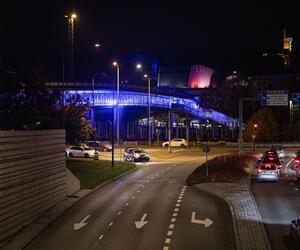 Site1512-ogier-finlande21