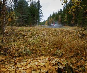 Site1534-ogier-finlande21