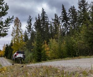 Site1543-ogier-finlande21