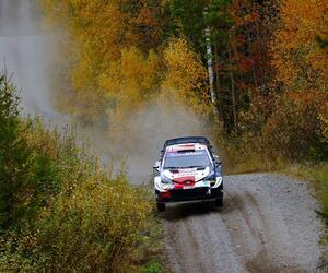 Site1556-ogier-finlande21