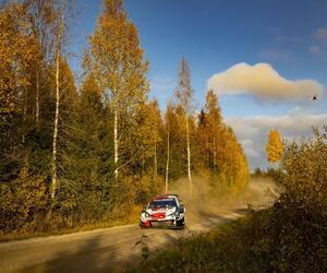 Site1614-ogier-finlande21