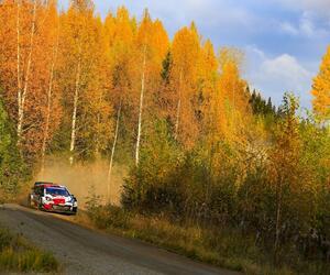 Site1616-ogier-finlande21