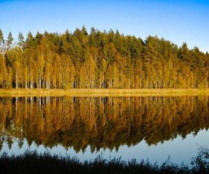 Site1831-ambiance-finlande21