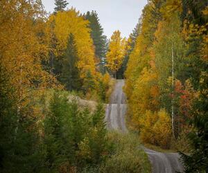 Site1837-ambiance-finlande21