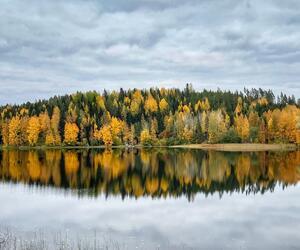 Site1840-ambiance-finlande21