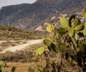 Site5827-ambiance-mexique18