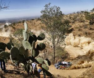 Site5528-ogier-mexique18