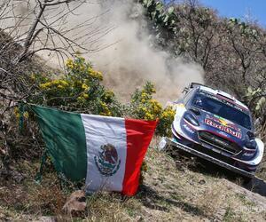 Site5704-ogier-mexique18