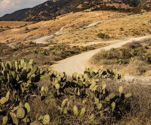 Site5826-ambiance-mexique18