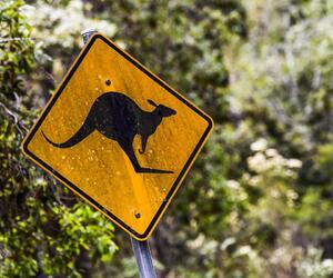 Site6838-ambiance-australie18