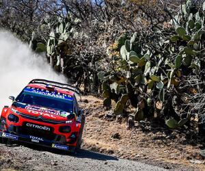 Site6732-ogier-mexique19