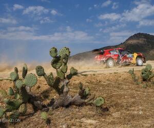 Site6340-ogier-mexique19