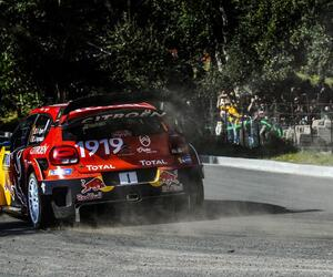 Site5336-ogier-corse19