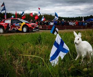 Site4441-ogier-finlande19-rbcp