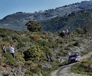 Site6336-ogier-corse17