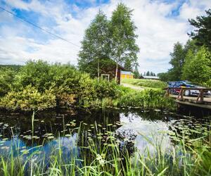 Site3522-ogier-finlande17