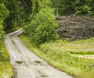 Site3842-ambiance-finlande17