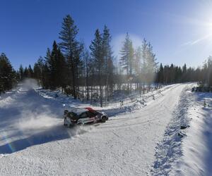 Site2426-ogier-arctic21