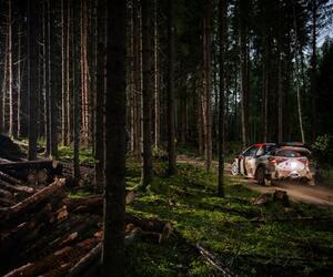 Site5340-ogier-estonie20-rbcp