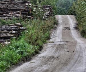Site5831-ambiance-estonie20