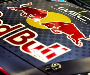 Site123-ogier-autosportshow18