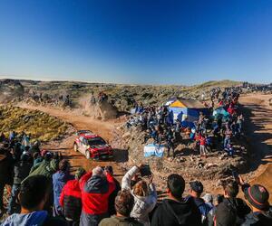 Site5330-ogier-argentine19