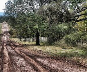 Site4830-ambiance-argentine17