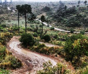 Site4837-ambiance-argentine17