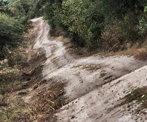 Site4840-ambiance-argentine17